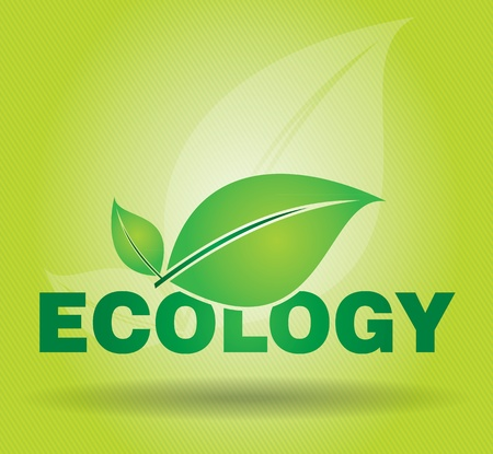 Ecology concept on advertising panel, abstract illustration with leaf and text  Vector