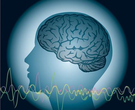 Brainwave, menselijk hoofd met hersenen en WVE lijnen