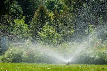 irrigate: Automated irrigation system in park, with grass and flower bed Stock Photo