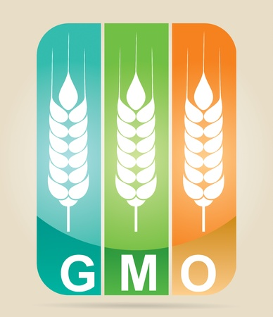 gm: Genetically modifies plants - agricultural concept