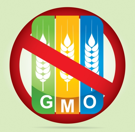 modified: Genetically modifies plants - agricultural concept