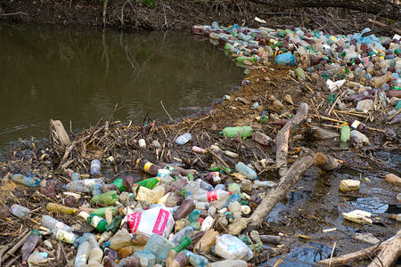 ecological disaster: Ecological disaster