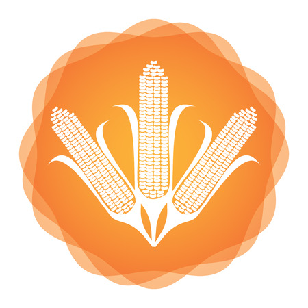 genetically modified crops: Maize icon, agricultural concept, abstract illustration for your design