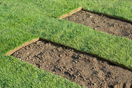 hangup: Rolled sod for new lawn, during hang-up Stock Photo