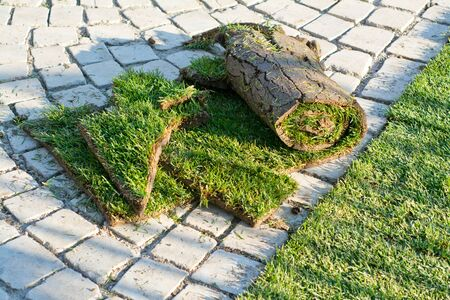 turf pile: Rolled sod for new lawn, before hang-up Stock Photo