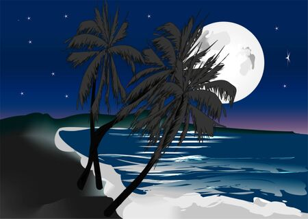 moon and palm trees Stock Vector - 11574239