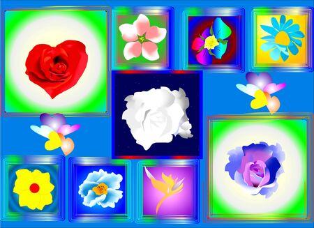 flower arrangements Stock Vector - 12976467
