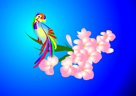 A parrot Vector
