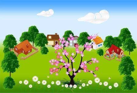 coma: spring Illustration