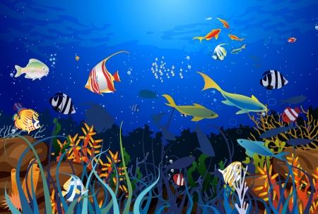 undersea: los arrecifes de coral Vectores