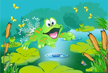 tree frogs: the pond