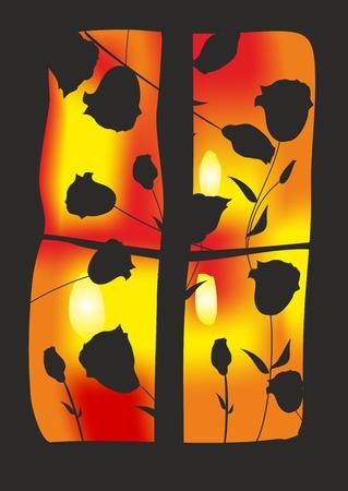 evening: rose bush in the evening, Illustration
