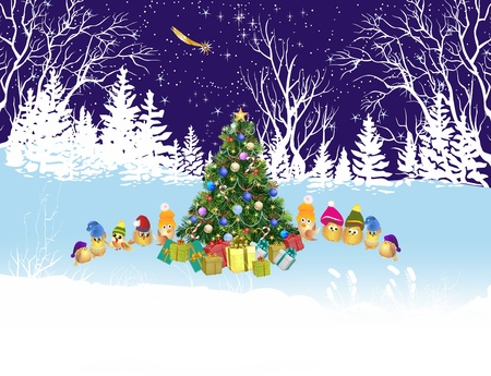 snow forest: Christmas tree in the forest