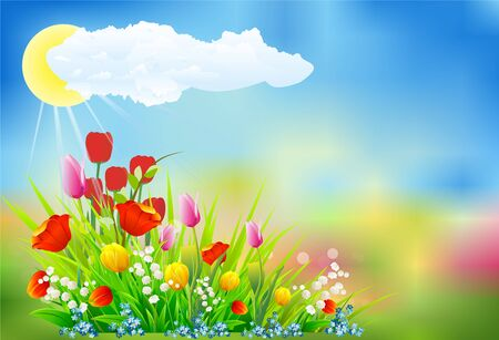 Spring decoration with tulips