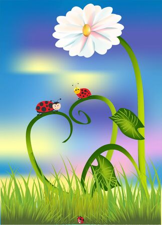 composition with ladybugs that sit on the grass