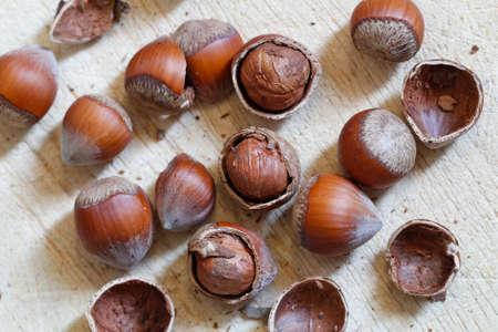 disorderly: Nuts, hazelnuts. Disorderly numerous ripe brown hazelnuts.