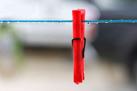 peg: Red clothes peg on clothesline with rain drops.