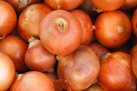 新鮮な玉ねぎ。玉ねぎの背景。完熟玉ねぎ。市場で玉ねぎ。