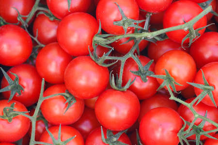 multitude: Organic cherry tomatoes. Multitude of cherry tomatoes, close up view.