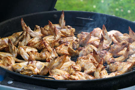 Chicken wings on barbecue grill.