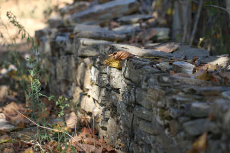 tough man: Part of the garden wall from natural stones.