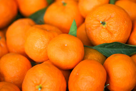 crone: Tangerines background. Fresh oranges on the market. Healthy fruits.