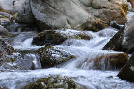 Stream in Ida Mountain, Turkey. Beautiful nature.
