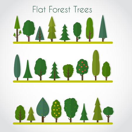 Forest elements - trees and fir-trees, spruce. Flat style vector illustration.