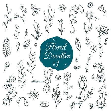 piuma bianca: Disegnata a mano set floreale con gli elementi della natura. Illustrazione vettoriale.