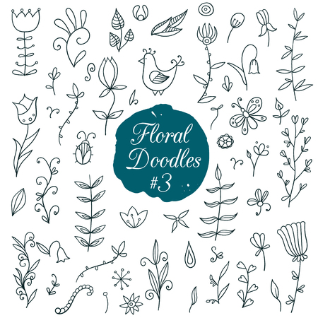 elements of nature: Hand drawn floral set with nature elements. Vector illustration. Illustration