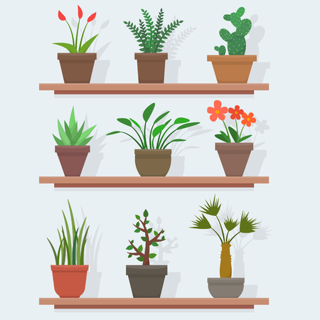 House plants and flowers in pots. Flat style vector illustration. Ilustração