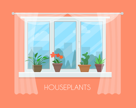 House plants and flowers in pots in window with a curtain. Flat style vector illustration.