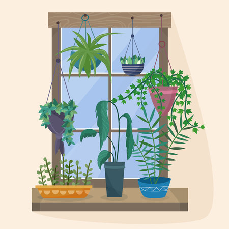 Window with houseplants and flowers in pots. Stock Photo