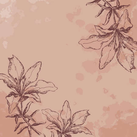 Tiger Lily. sketch. vintage (pink) Vector
