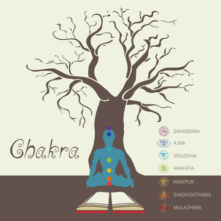 chakra energy: Yoga. Energy centers of the human. Chakra. system of self