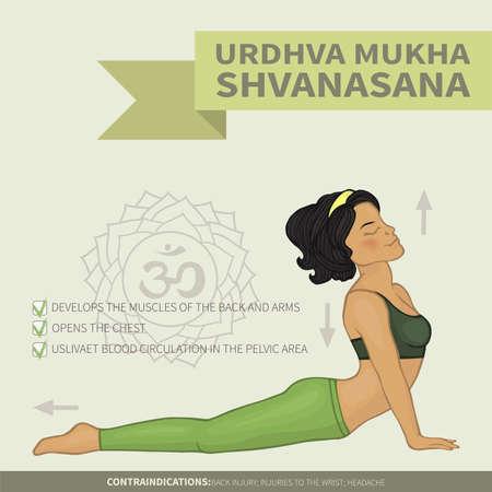 Yoga infographics Urdhva mukha shvanasana (Hatha yoga)