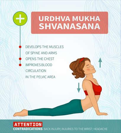 hatha: Yoga therapy. Yoga infographics Urdhva mukha shvanasana (Hatha yoga)