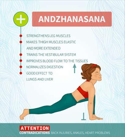 hatha: Yoga therapy. Yoga infographics Andzhanasana (Hatha yoga)