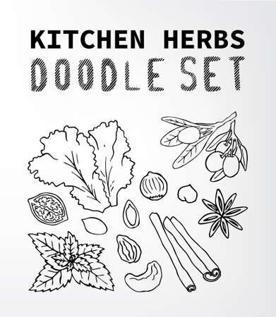 cashews: kitchen herbs Fruit doodle set. Set of elements suitable for your restaurant business. Set of elements 15