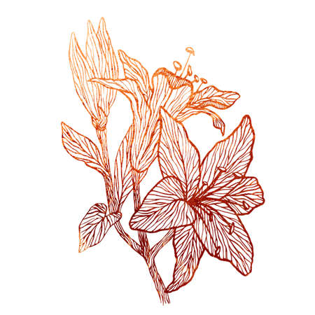 Floral ornamental copper texture. The pattern can be used as a print on postcards and T-shirts