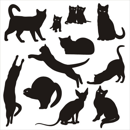 nature silhouette: black and white Silhouettes of cats