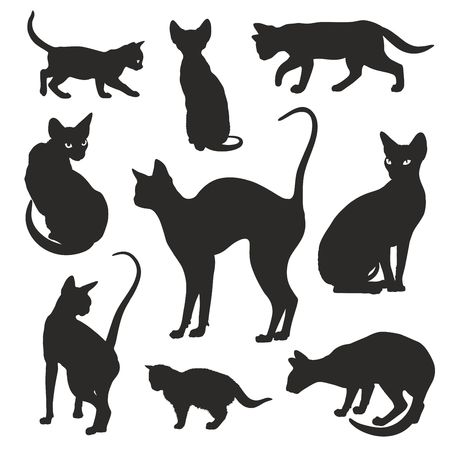 Cats silhouettes elegant graphic icon vector set Illustration