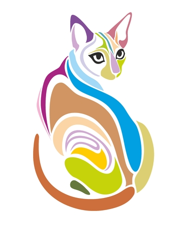 pussy cat: Cat Vector Decorative creative colorful graphic design Illustration