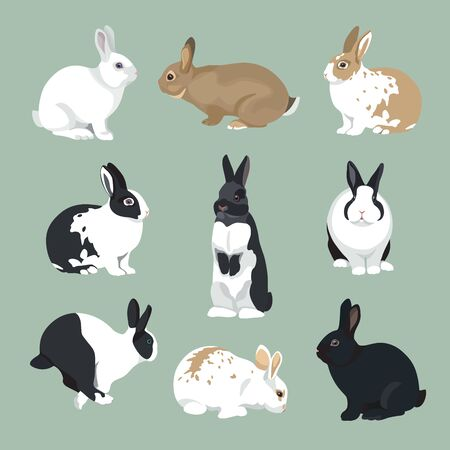 Easter Bunny illustration  Rabbits set in retro color style Illustration