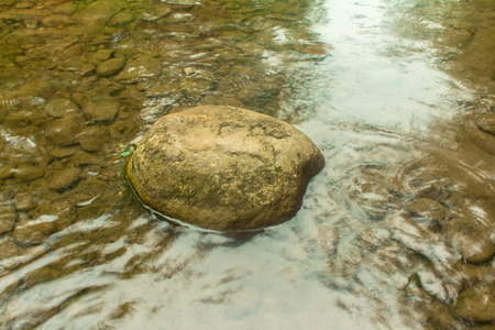 fresh water stream in mountain brook, close up Stock Photo
