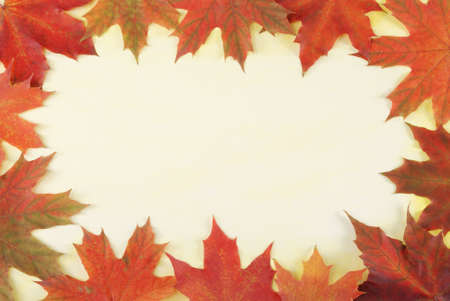 desgn: leaves border on textured watercolor painted paper Stock Photo