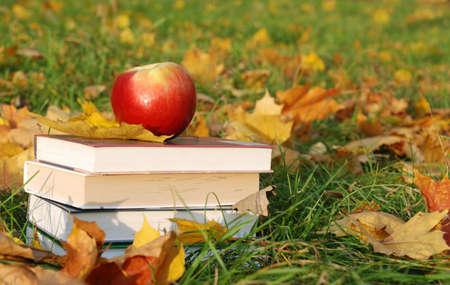 voortgezet onderwijs: Terug naar school-concept
