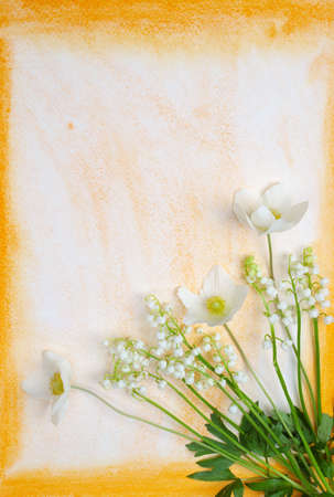 modest: Spring flowers on watercolor background
