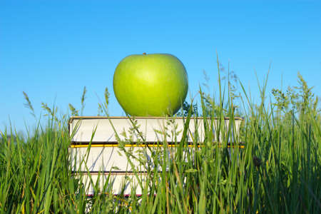 Green apple on stack of books in green grass Stock Photo