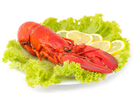 lobster dinner: Lobster Dinner served on plater with lemon